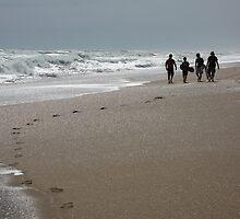 Beach Boys by family