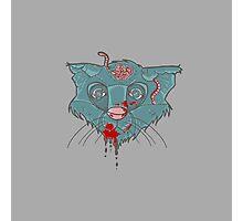 Zombie Frankenkitty Photographic Print
