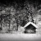 Another hut at the lake by Kurt  Tutschek