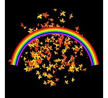 Rainbows and Maple Leaves Photographic Print