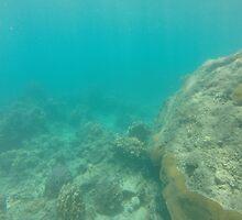 Fijian Ocean by openpaths
