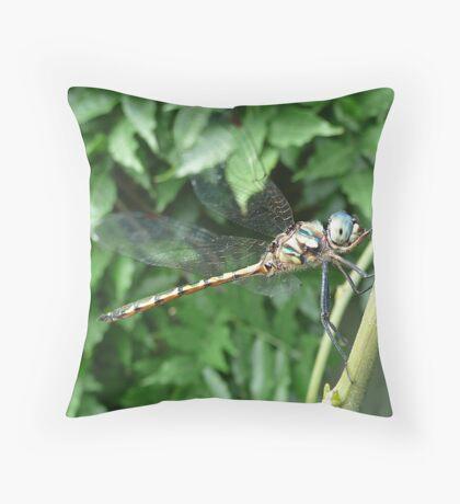 Enter  The Dragon Throw Pillow
