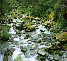 small river on routeburn track by peterwey