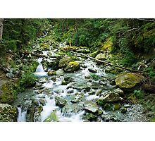 small river on routeburn track Photographic Print