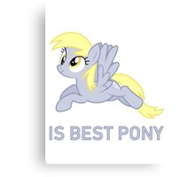 Derpy Is Best Pony - MLP FiM - Brony Canvas Print