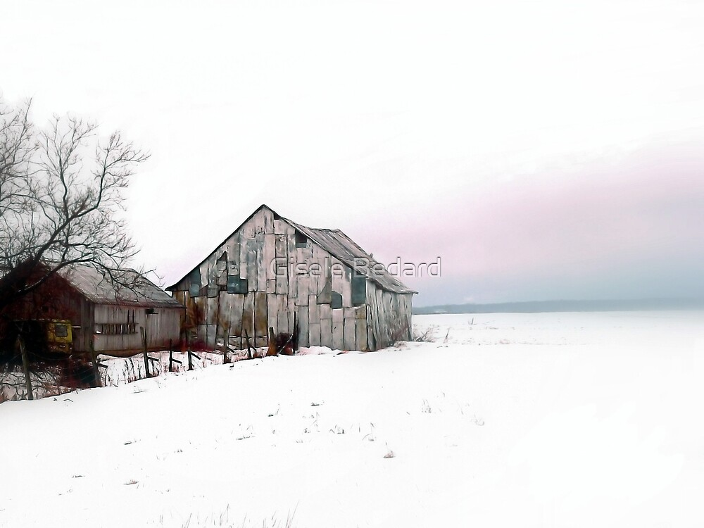 Country Scene by Gisele Bedard