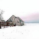 Country Scene by Gisele Bedard