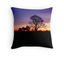 The Rd to Haddington Throw Pillow