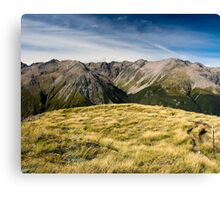 mountains at avalanche peak Canvas Print