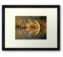 The river Thames at Pangbourne Framed Print
