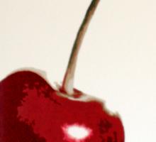 Cherry- Warhol Sticker