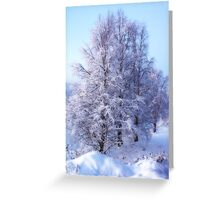 Winter Birch #1 Greeting Card