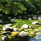 Mossman Gorge by Marilyn Harris