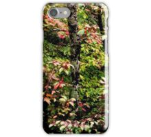 An Elven Forest iPhone Case/Skin
