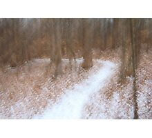 Snow Covered Path Photographic Print