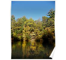 Fall Color Reflections Poster
