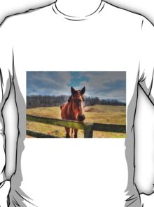 My Favorite Horse T-Shirt