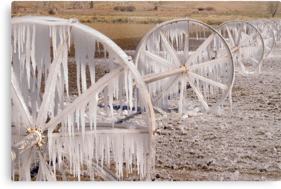 Frozen Wheels by Dan Sweeney