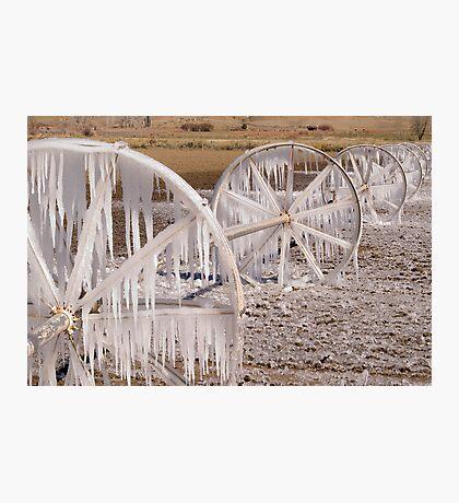 Frozen Wheels Photographic Print