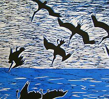 diving birds by kdesignz