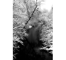 Natures Black and White Photographic Print