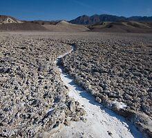 Trail of salt by Denise Goldberg