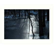 Trees and Ice Art Print