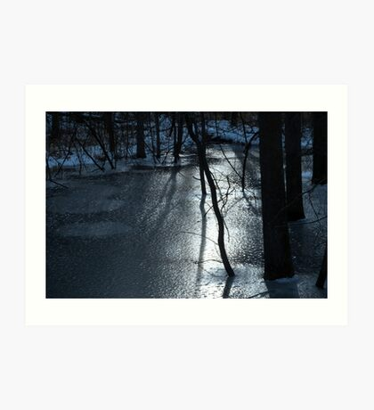 Trees and Ice Art Print
