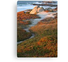 Northern CaliforniaBeach Trail Canvas Print