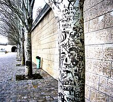 Graffiti Trees by Scott Chalmers