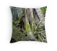 Strangler Fig, Lamington National Park, Qld Throw Pillow