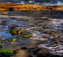 Evening Tide by Steven Maynard