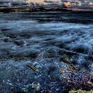 Tidalflo by Steven Maynard