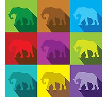 ELEPHANTS in many colours Photographic Print