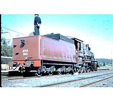 Brown Bomber Photographic Print