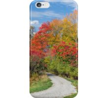 Backroad to Autumn iPhone Case/Skin