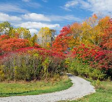 Backroad to Autumn by Kenneth Keifer