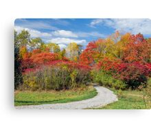 Backroad to Autumn Canvas Print