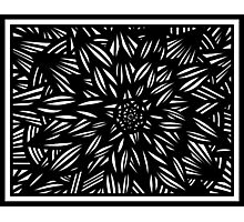 Vigen Abstract Expression Black and White Photographic Print