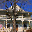 The Dixie House by NatureGreeting Cards ©ccwri