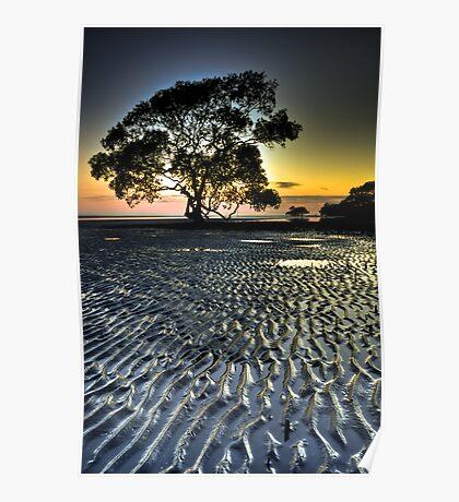 Nudgee Beach at Dawn Poster