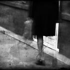 journal d'une femme du chambre by alice drogoreanu
