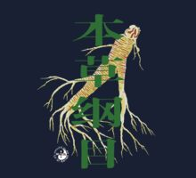 Compendium of Materia Medica with Ginseng (FuQiZheng edition) by FuQiZheng