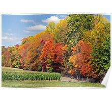 Autumn Trees and Cornfield Poster