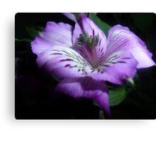 Purple Flora Canvas Print