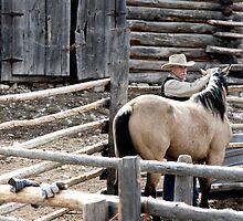 Good Horse by Ann Rodriquez