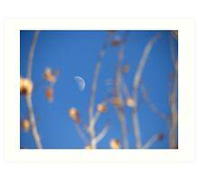 I See The Moon Art Print