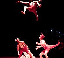 Kangaroos in the air! by Mili Wijeratne