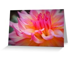 Free Flowing Dahlia Greeting Card