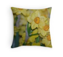 JonQuills - The smell of spring Throw Pillow